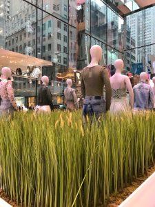 Fashion army, 5th avenue