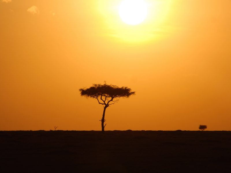 Kenya – heaven for safari enthusiasts