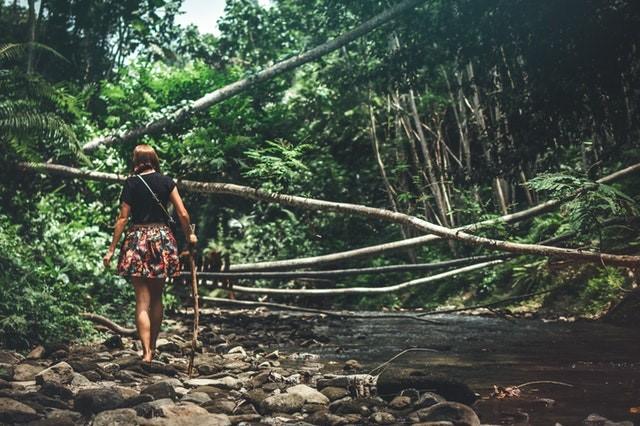 Bird-watching-walking-in-jungle